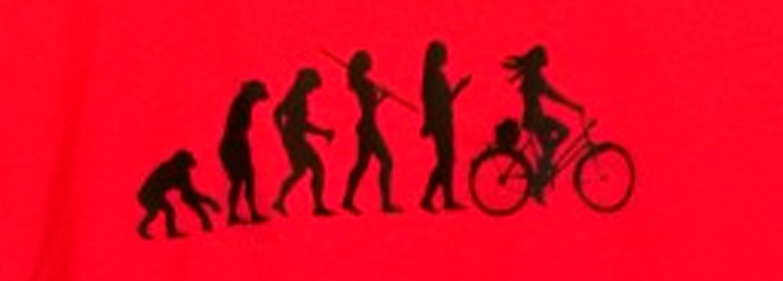 Nuestras Camisetas
